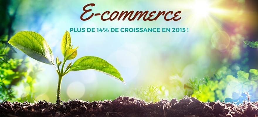 #Ecommerce : plus de 14% de croissance en 2015 !