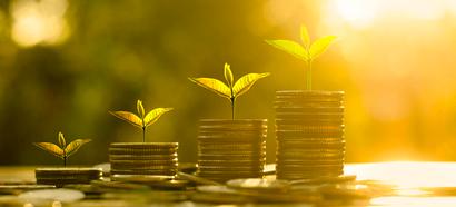 Rebond de la croissance du #ecommerce au 1er trimestre 2015 : +13,5%