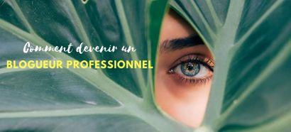 Comment devenir un blogueur professionnel ?