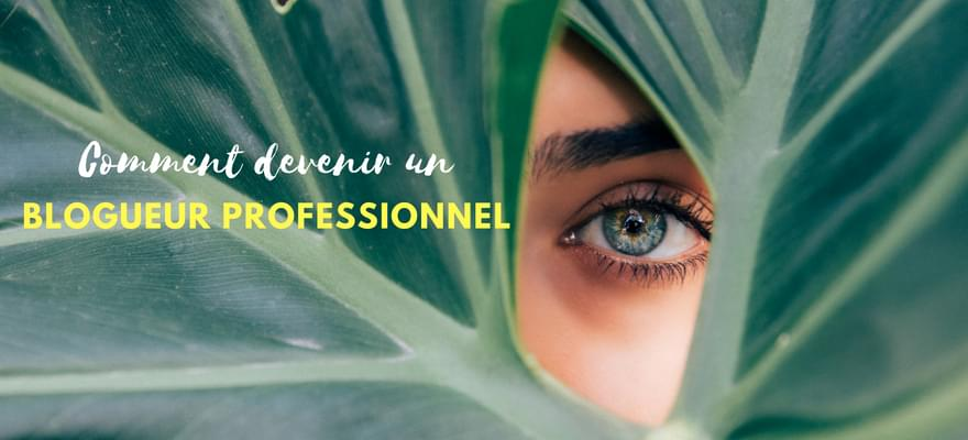 Comment devenir un blogueur professionnel ?