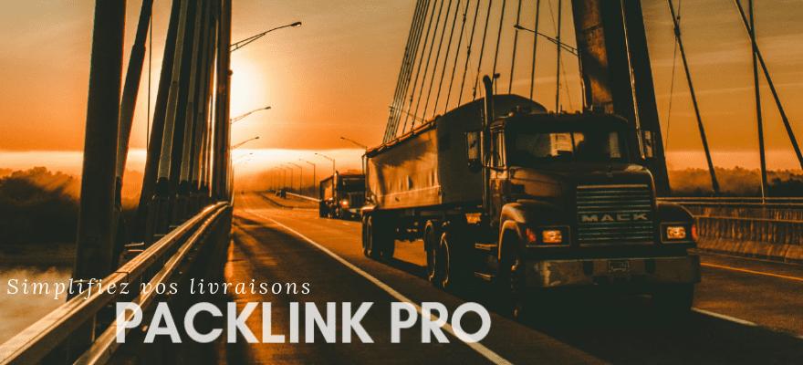 Simplifiez vos livraisons avec Packlink Pro